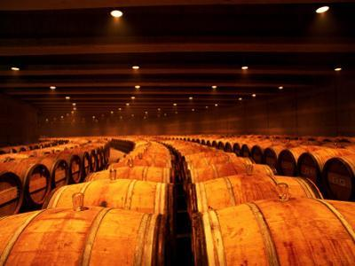 Barrel Room at Opus One, Napa Valley, California by Oliver Strewe