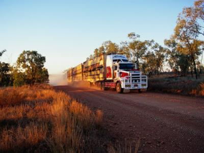 Roadtrain Hurtles Through Outback, Cape York Peninsula, Queensland, Australia by Oliver Strewe