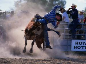Rodeo Rider Falling Off Bull, New South Wales, Australia by Oliver Strewe