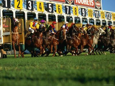 Start of Horse Race, Sydney, New South Wales, Australia