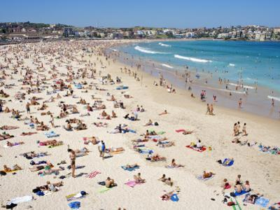 Summer Holiday Crowds on Bondi Beach by Oliver Strewe