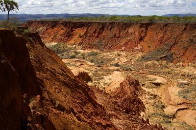 In the Red Tsingy Area, Close to Diego Suarez Bay, Northern Madagascar, Africa