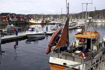Trondheim Harbor, Trondheim, Norway, Scandinavia, Europe