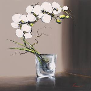 Swirls of White Orchids I by Olivier Tramoni
