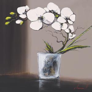 Swirls of White Orchids II by Olivier Tramoni