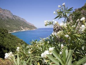 Blue Sea at Santa Maria Navarrese, Gulf of Orosei, Sardinia, Italy, Mediterranean, Europe by Olivieri Oliviero