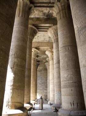 Temple of Edfu, Egypt, North Africa, Africa by Olivieri Oliviero