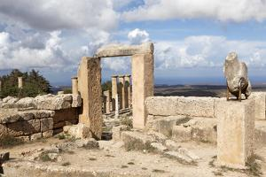 Cyrene, UNESCO World Heritage Site, Founded in 630 Bc, Libya, North Africa, Africa by Oliviero Olivieri