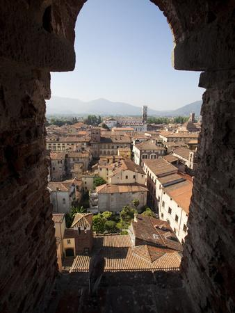 View from the Giunigi Tower, Lucca, Tuscany, Italy, Europe