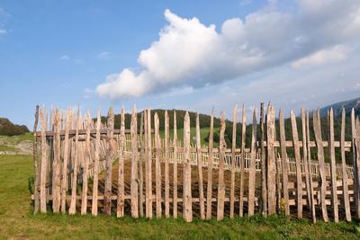 Fence, Old and Weathered, in Biogradska Gora National Park, Montenegro