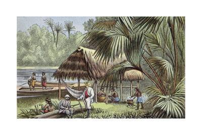 https://imgc.allpostersimages.com/img/posters/on-the-banks-of-the-oyapock-river-french-guiana_u-L-PPCANH0.jpg?artPerspective=n