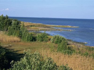 https://imgc.allpostersimages.com/img/posters/on-the-coast-of-muhu-an-island-to-the-west-of-tallinn-muhu-estonia-baltic-states-europe_u-L-P7NV7K0.jpg?p=0