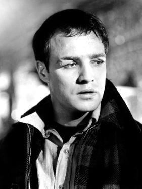 On the Waterfront, Marlon Brando, 1954