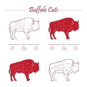 BUFFALO MEAT CUTS SCHEME by ONiONAstudio