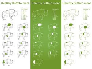 HEALTHY BISON Meat Parts Set by ONiONAstudio