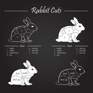 Rabbit Meat Cuts Scheme - Chalkboard by ONiONAstudio