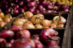 Onions and Shallots Fresh Produce Photo Poster Print