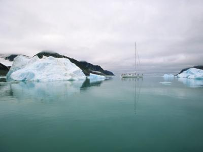 Sailboat Cruising the Arctic by Onne van der Wal