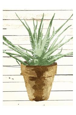 Wood Plant Pot by OnRei