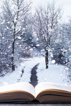 https://imgc.allpostersimages.com/img/posters/open-book-with-winter-woodland-background-and-falling-snow_u-L-Q1054YA0.jpg?p=0
