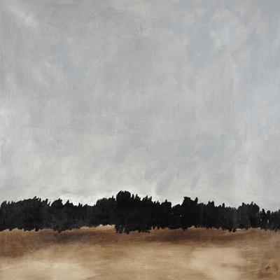 https://imgc.allpostersimages.com/img/posters/open-range_u-L-Q1IHI6V0.jpg?artPerspective=n