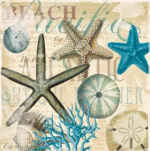 Beach Shells R1 by Ophelia & Co.