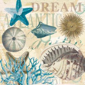 Dream Shells R1 by Ophelia & Co.