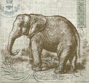 Elegant Safari Elephant 1 by Ophelia Co.