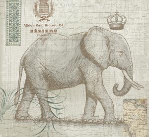 Elegant Safari Elephant 2 by Ophelia Co.