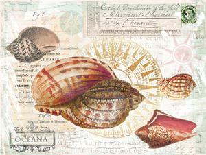 Oceana by Ophelia & Co^
