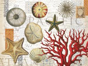 Sea Treasures by Ophelia & Co.