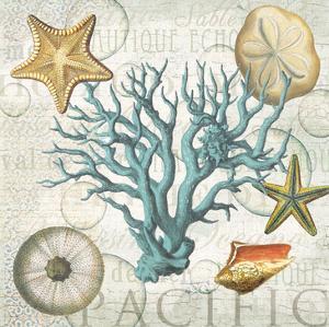 Shells 1 by Ophelia & Co^