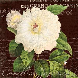 White Camilla 1 by Ophelia & Co^