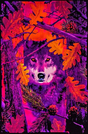 Opticz Autumn Wolf Blacklight Reactive Poster