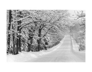 Road Home by Orah Moore