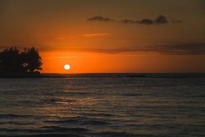 https://imgc.allpostersimages.com/img/posters/orange-sunset-with-trees_u-L-Q1CAW1D0.jpg?artPerspective=n