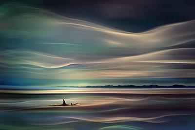 https://imgc.allpostersimages.com/img/posters/orcas_u-L-PN9VYP0.jpg?artPerspective=n