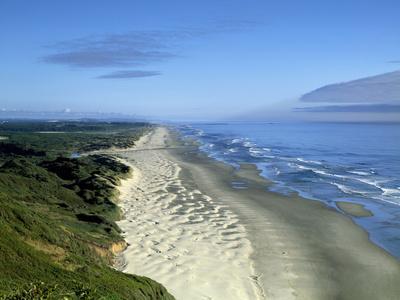 https://imgc.allpostersimages.com/img/posters/oregon-dunes-along-the-pacific-ocean_u-L-PWB5RH0.jpg?p=0