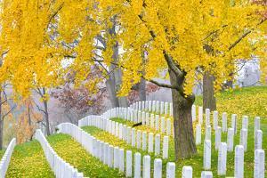 Arlington National Cemetery near to Washington Dc, in Autumn by Orhan