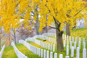 Arlington National Cemetery near to Washington Dc, in Autumn by Orhan