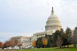 Capitol Building in Autumn, Washington DC USA by Orhan