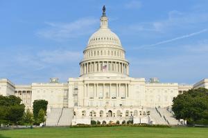 Capitol - Washington Dc, United States by Orhan