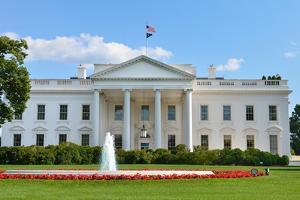 The White House - Washington DC by Orhan