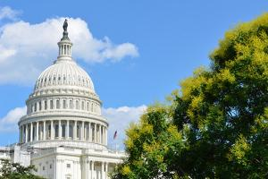 US Capitol Building in a Cloudy Summer Day - Washington DC by Orhan
