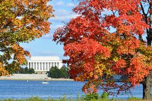 Washington Dc, Lincoln Memorial in Autumn by Orhan