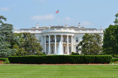 White House - Washington DC by Orhan