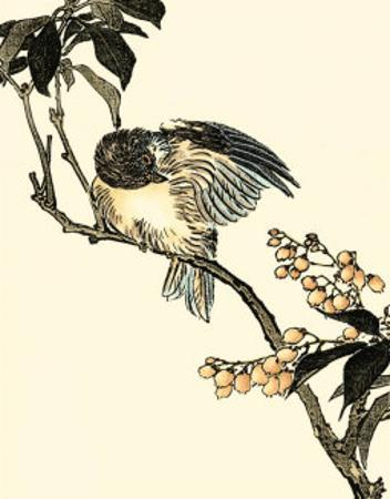 Oriental Bird on Branch V