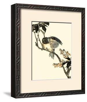 Oriental Bird on Branch V