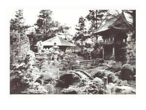Oriental Tea Garden, San Francisco, California