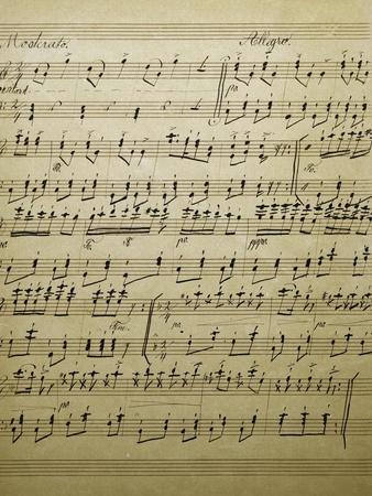 https://imgc.allpostersimages.com/img/posters/original-handwritten-score-for-schneider-polka_u-L-PPJFPG0.jpg?p=0